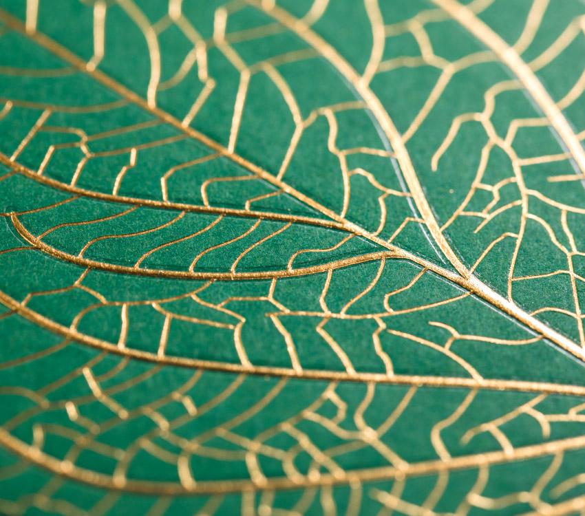 James-Cropper-Tailor-Made-Service-Leaf-Detail